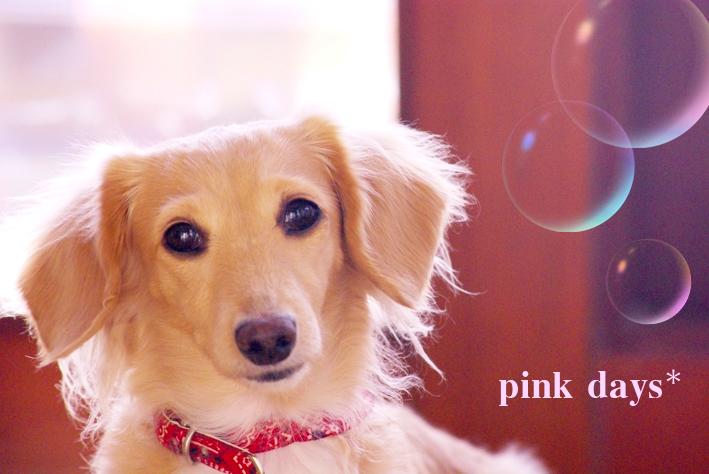 pink-days.jpg