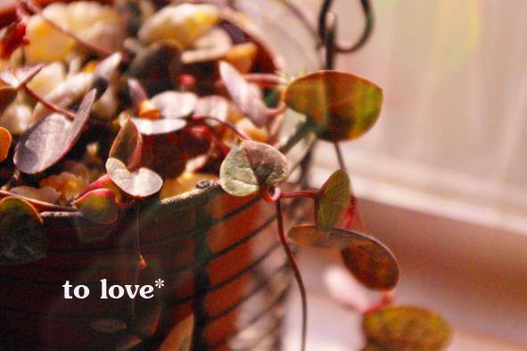 to-love.jpg